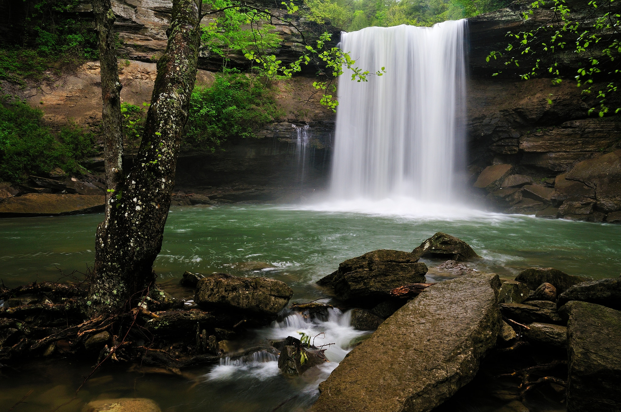 <div class='title'>           Greeter Falls         </div>                 <div class='description'>           Savage Gulf State Natural Area         </div>
