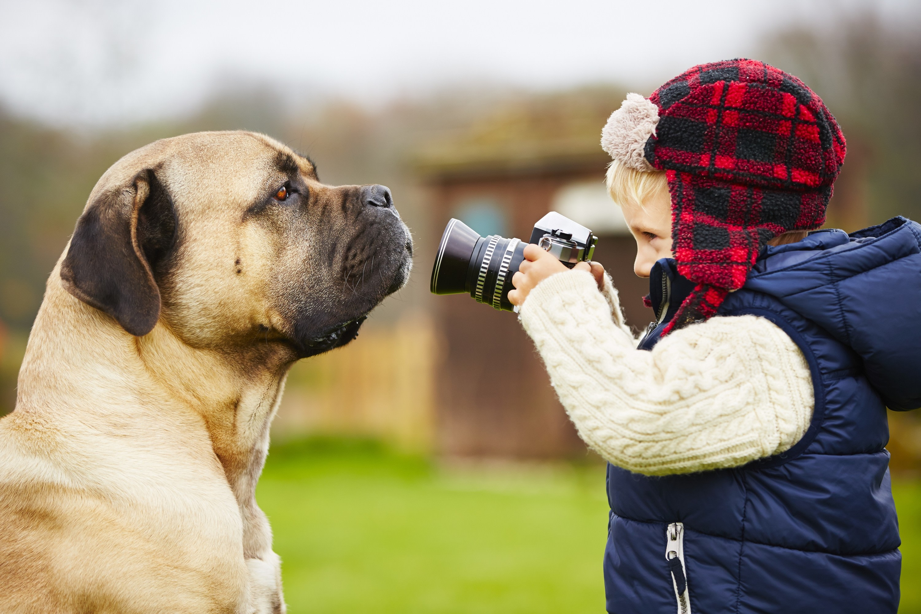 <div class='title'>           Child and Dog image         </div>                 <div class='description'>           Child photographing a pet dog for photo gift         </div>