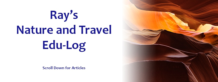 <div class='title'>           Nature and Travel Page Header         </div>
