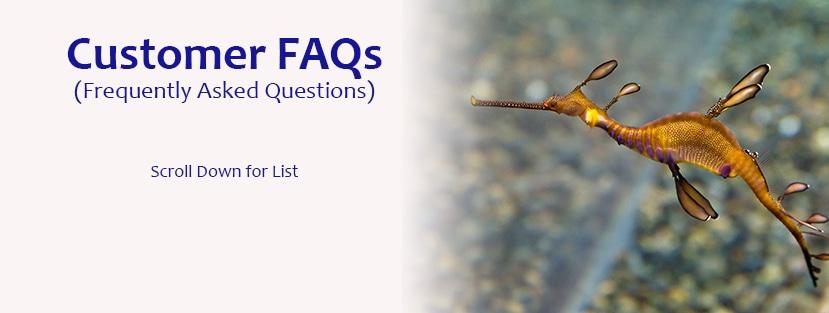<div class='title'>           FAQ Page Header         </div>