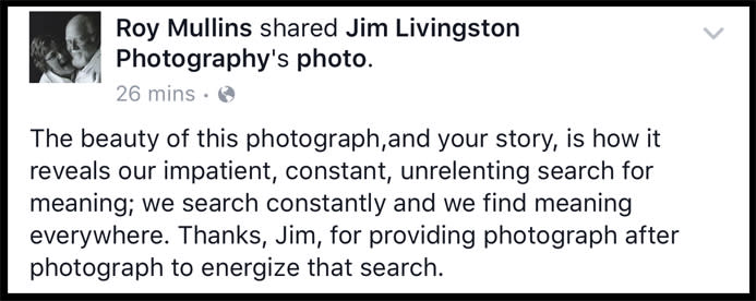 Testimonials about the work of Jim Livingston