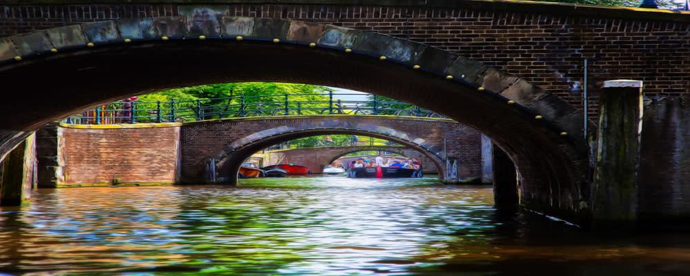 <div class='title'>           Amsterdamn 147361 16sm         </div>
