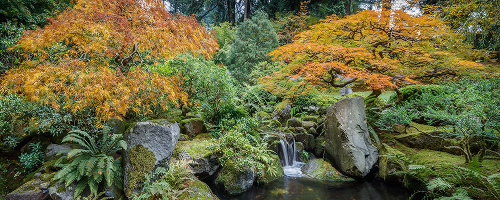 <div class='title'>           autumn japaneseGarden pano billboardASF         </div>