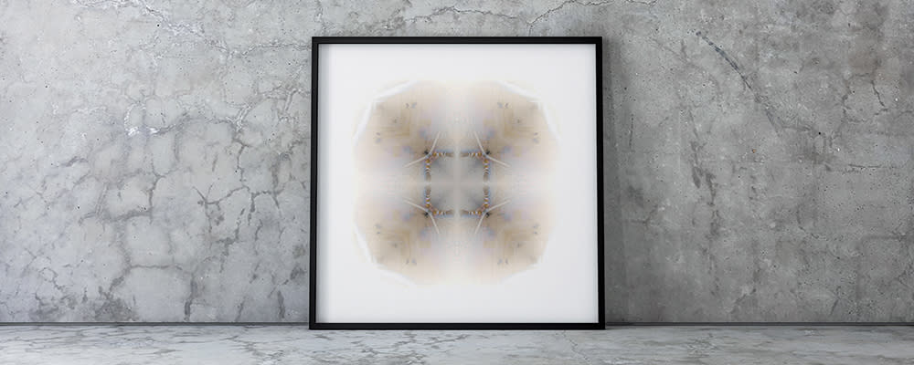 <div class='title'>           Concrete Wall Large Frame   Giant Leopard Moth | 4 Folds         </div>