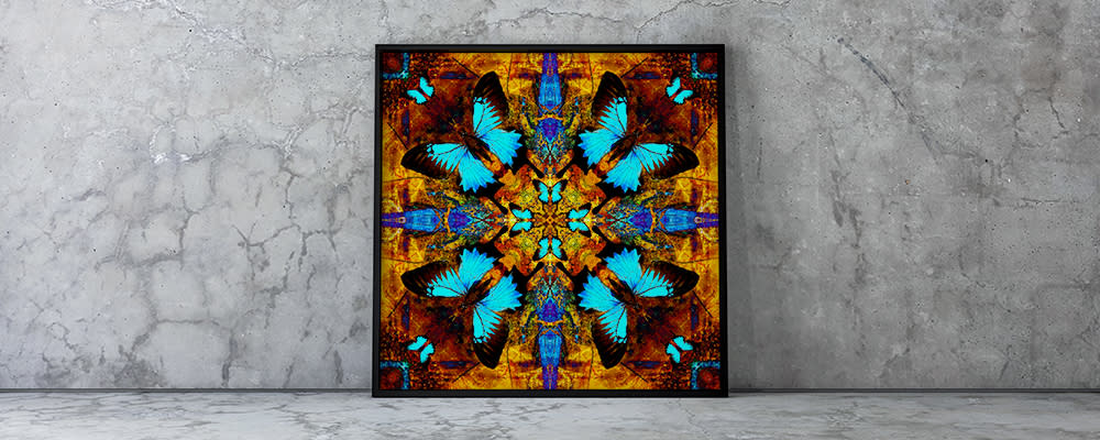 <div class='title'>           Concrete Wall Large Frame   Grasshopper | Papilio Blues         </div>