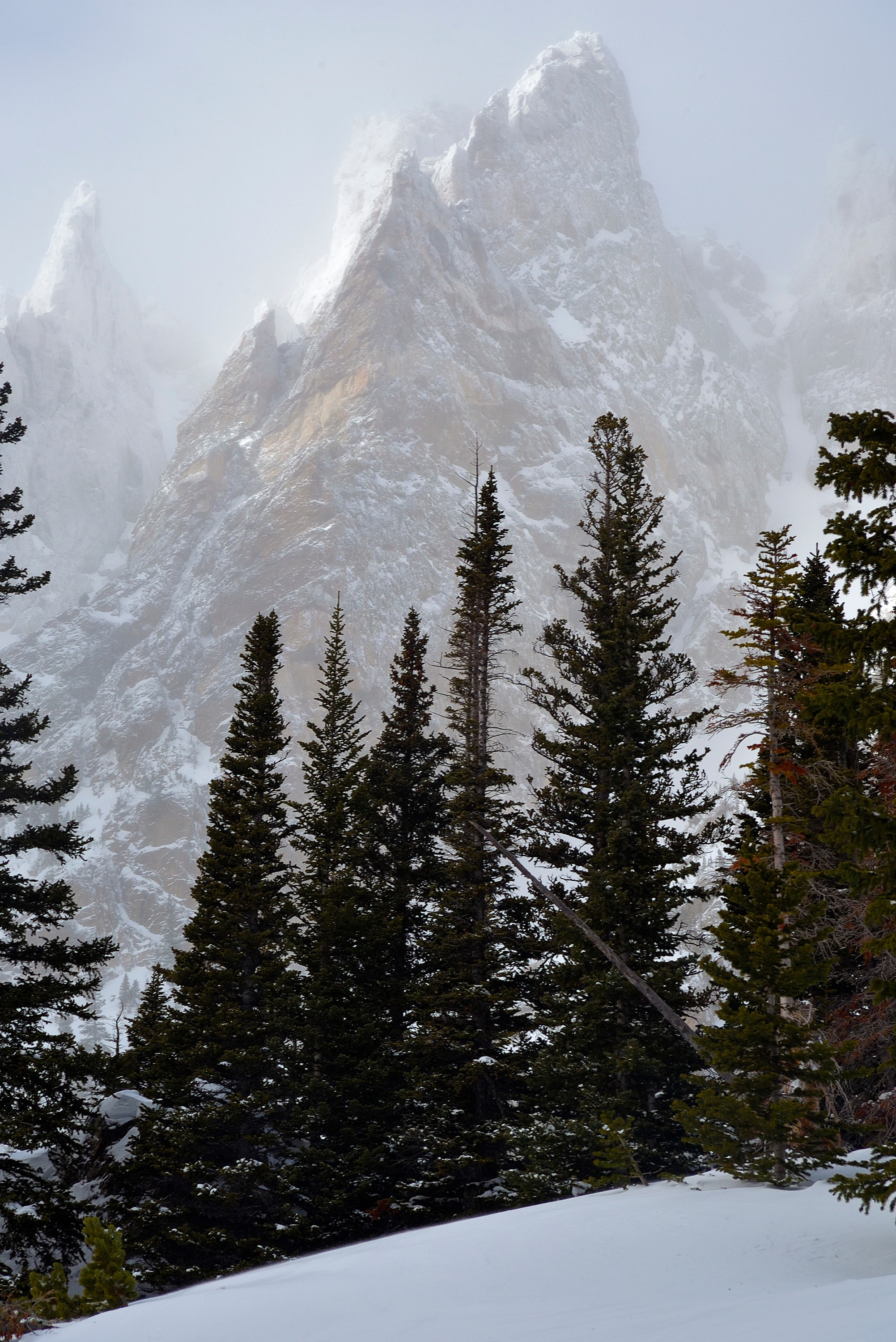 <div class='title'>           Mysterious Mountains         </div>                 <div class='description'>           A combination of low clouds and blowing snow gives a mysterious look to these jagged cliffs of rock on a blustery winter day in Rocky Mountain National Park. A touch of sunlight highlights the only partially visible spires, giving them an ethereal look.         </div>