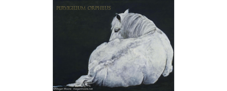 <div class='title'>           portrait of a horse by artist Megan Moore         </div>                 <div class='description'>                    </div>