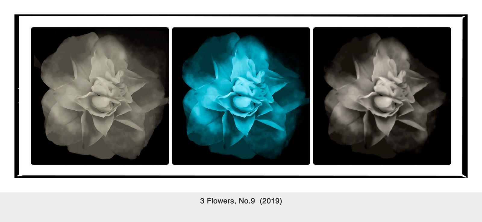 <div class='title'>           3 Flowers, No         </div>