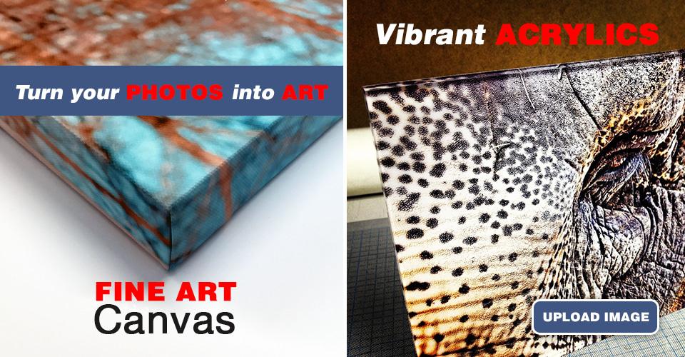 <div class='title'>           canvas acrylicl         </div>                 <div class='description'>                    </div>
