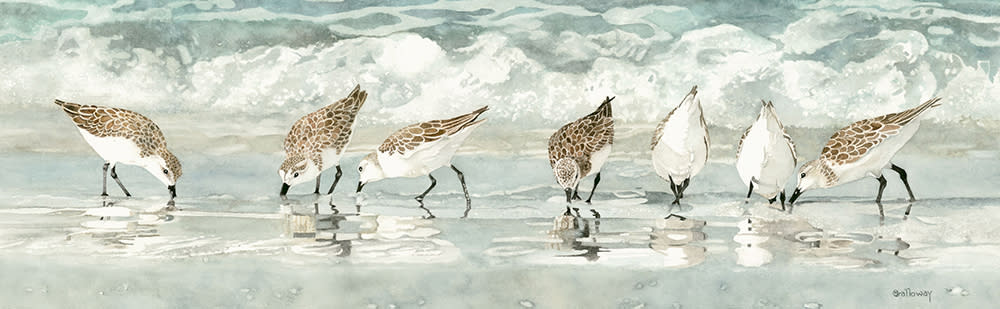 <div class='title'>           Sandpipers on the Beach slider         </div>                 <div class='description'>           Sandpiper enjoying the surf on a beach          </div>