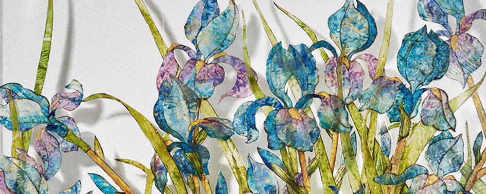<div class='title'>           Banner for Web Irises         </div>