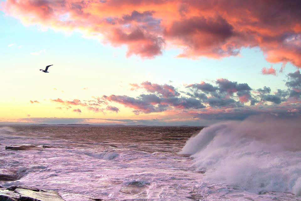 <div class='title'>           big waves pink clouds gull sunset seascape fpsxa8         </div>
