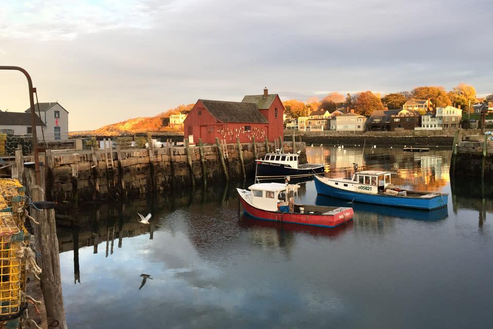 <div class='title'>           Rockport Harbor Motif  1 Gull Lobster Boats Headlands vmf5pk         </div>