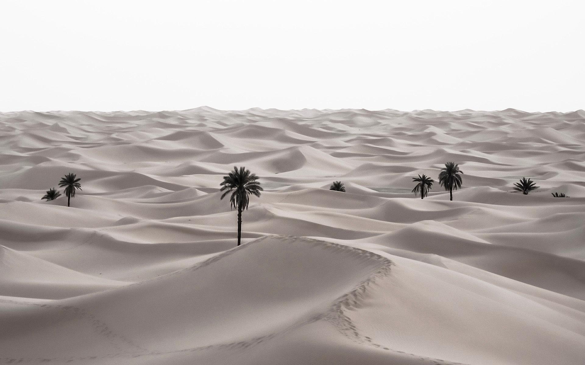 <div class='title'>           landscape  0000s 0010 algerie 0643         </div>
