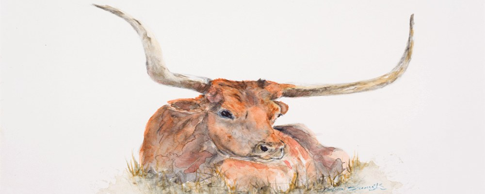 <div class='title'>           Resting in the Tall Grass         </div>                 <div class='description'>           Texas Longhorns from the Shoemacher Ranch         </div>
