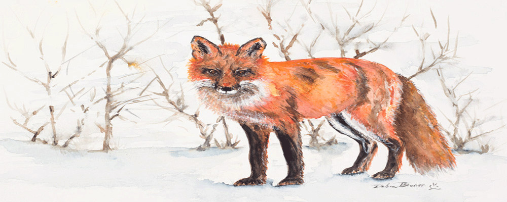 <div class='title'>           The Winter Fox         </div>                 <div class='description'>                    </div>