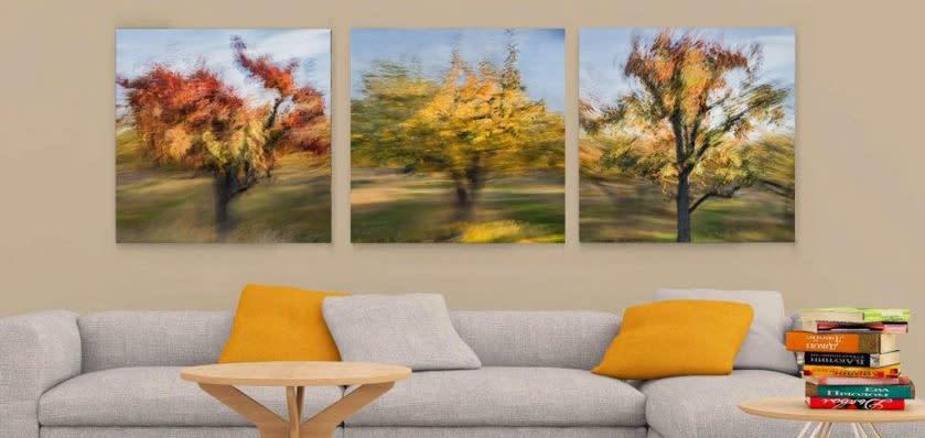 <div class='title'>           free modern livingroom mockup1 900x428         </div>