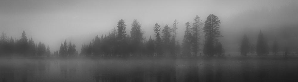 Ducks on pond hx4w0x
