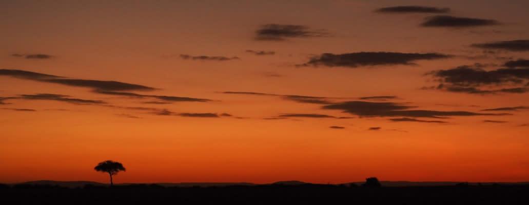 <div class='title'>           Masai Mara Sunrise         </div>