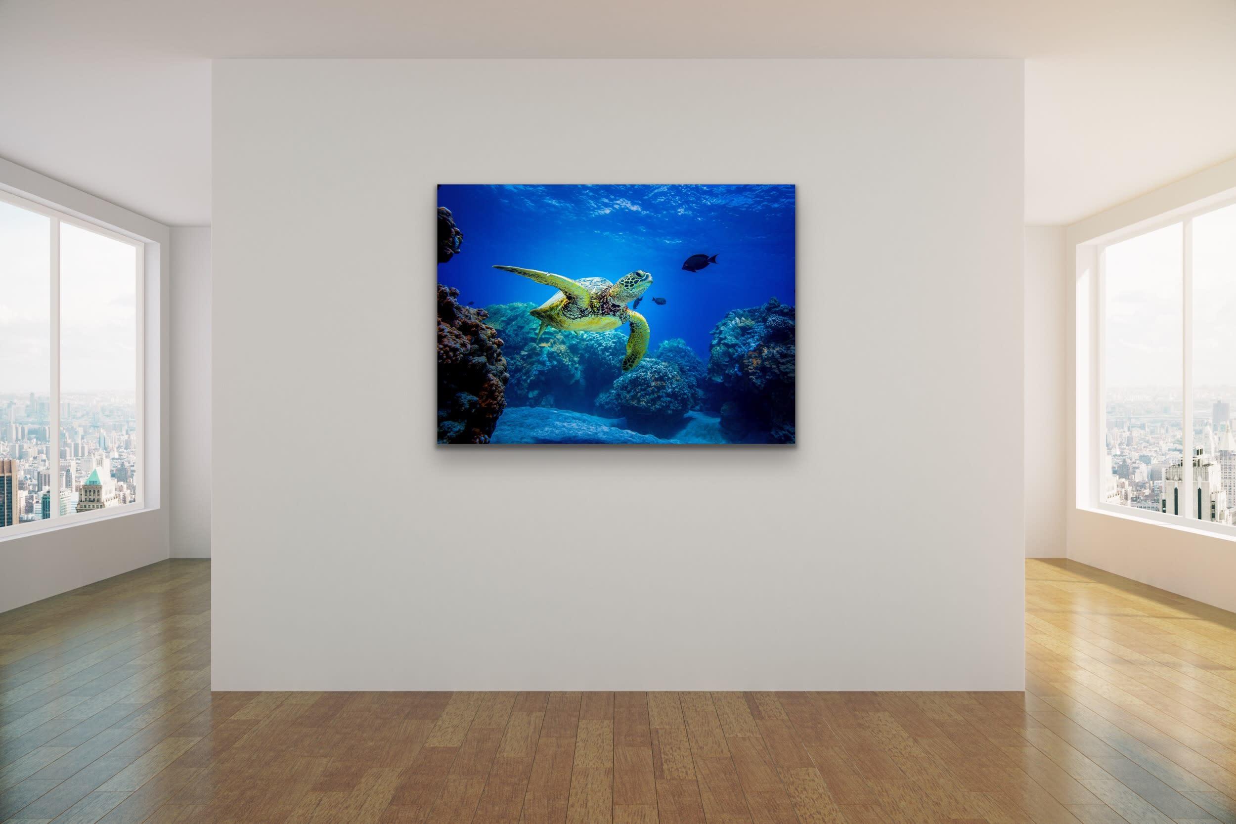 <div class='title'>           Drew Sulock at Evo Art Maui Mock Up14         </div>