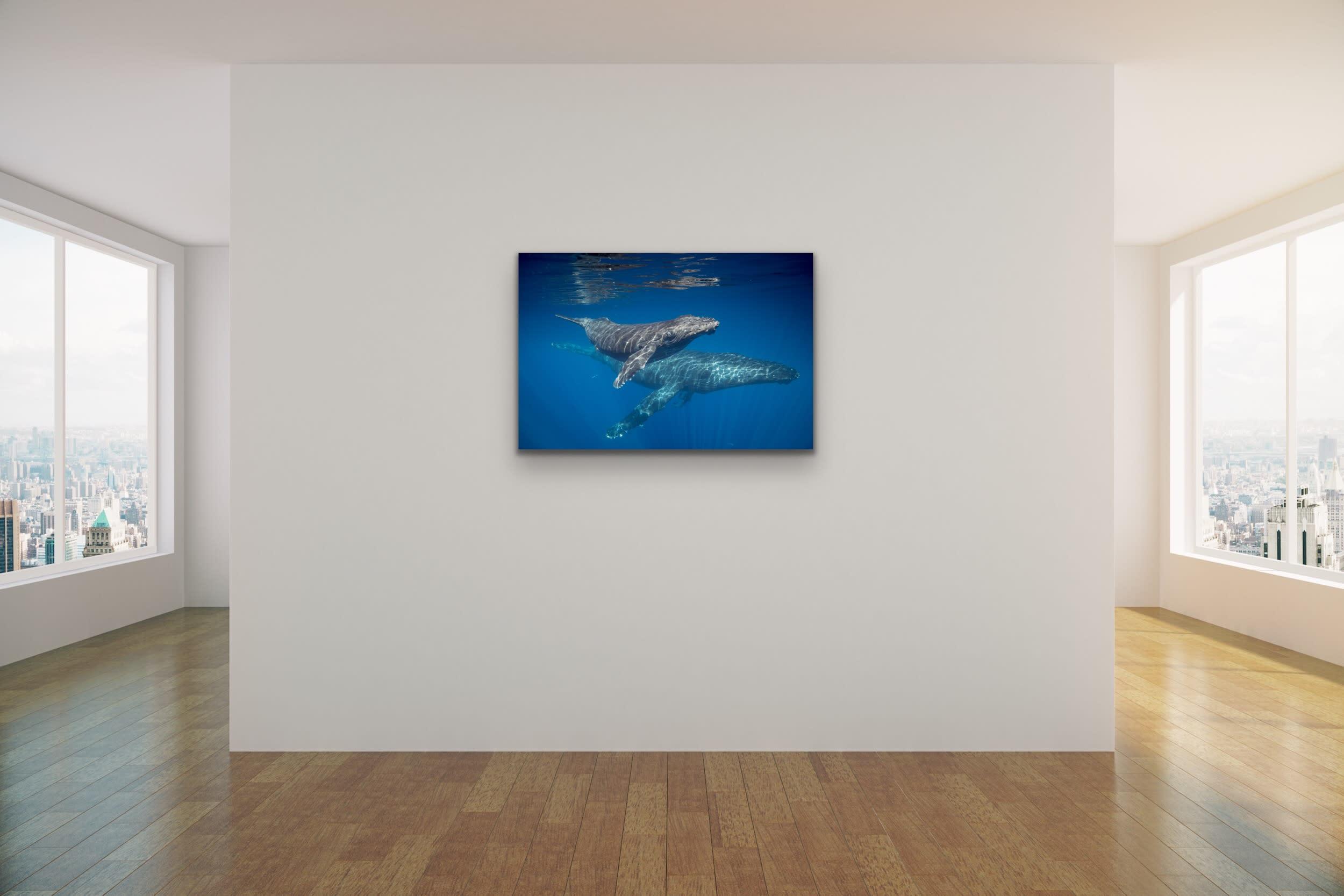 <div class='title'>           Drew Sulock at Evo Art Maui Mock Up17         </div>