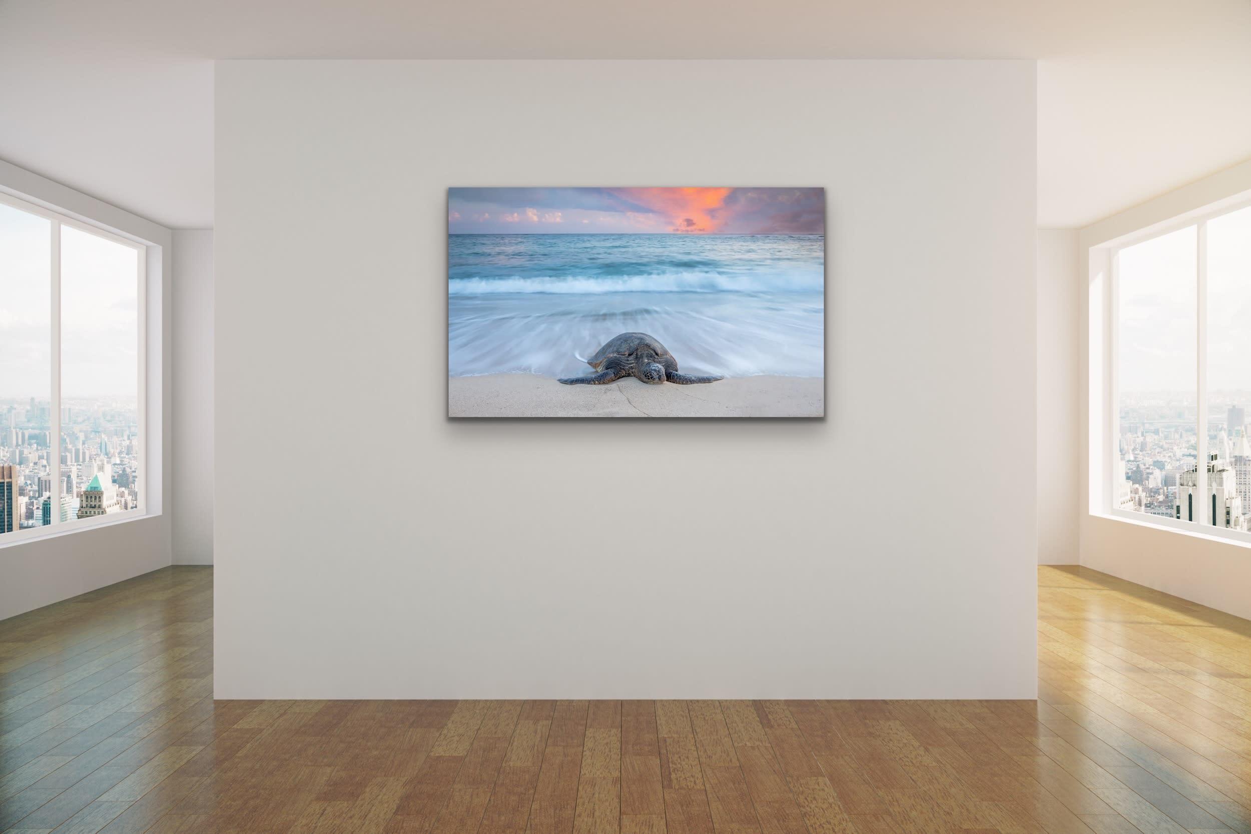 <div class='title'>           Drew Sulock at Evo Art Maui Mock Up18         </div>
