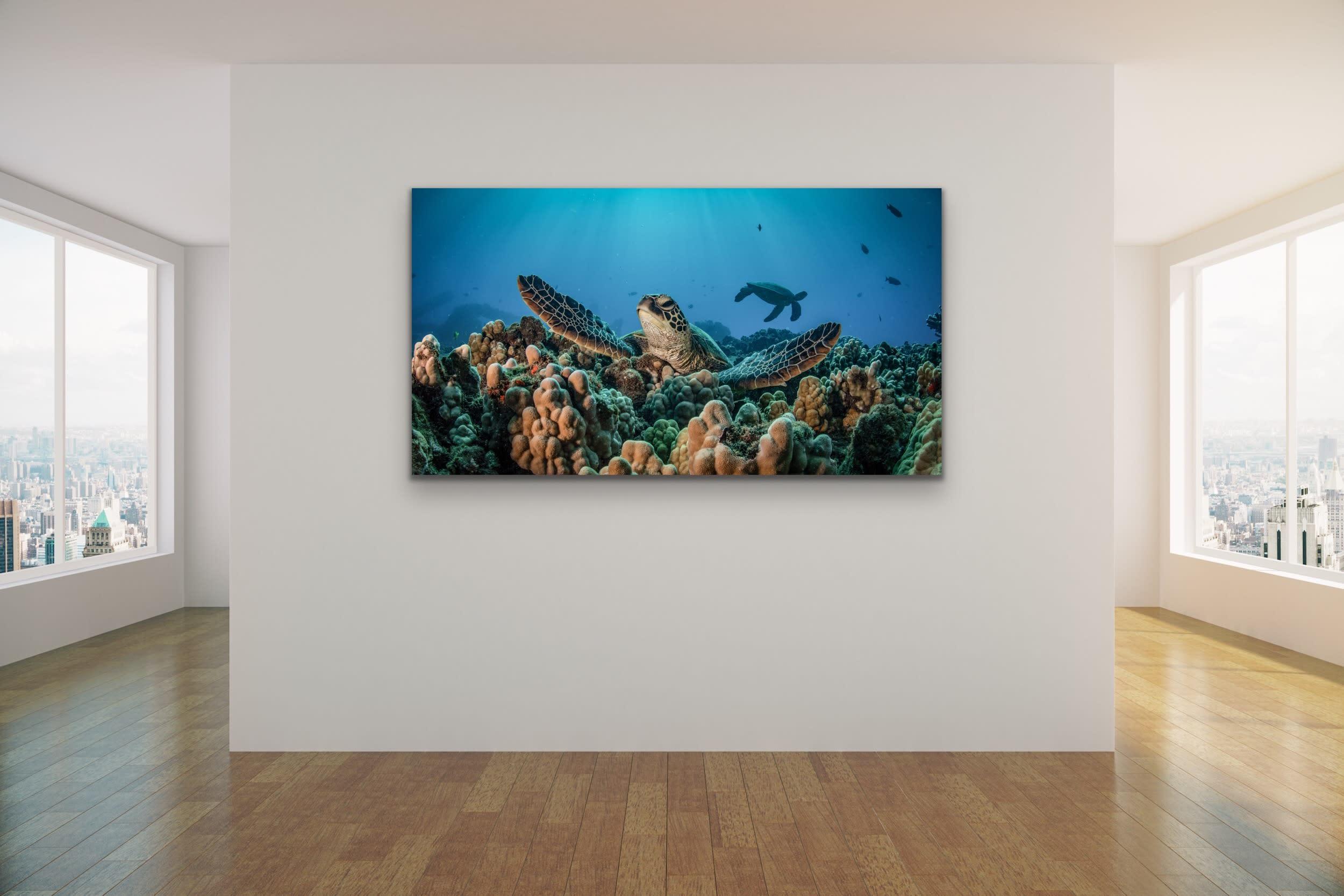 <div class='title'>           Drew Sulock at Evo Art Maui Mock Up22         </div>