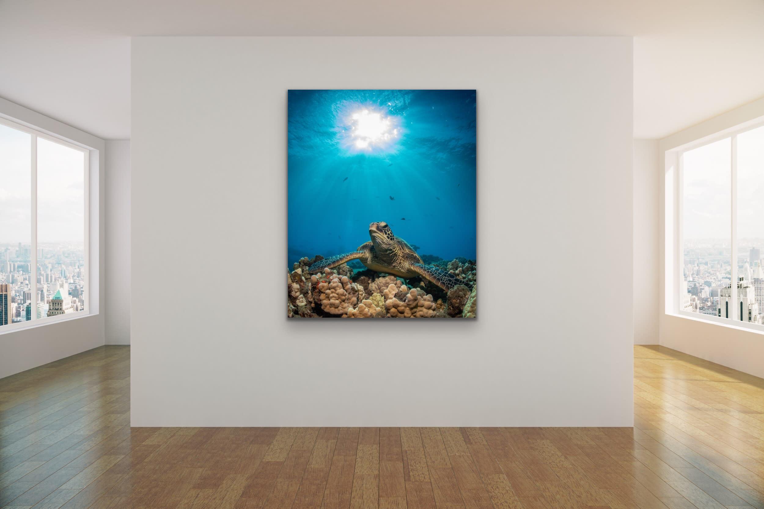 <div class='title'>           Drew Sulock at Evo Art Maui Mock Up35         </div>
