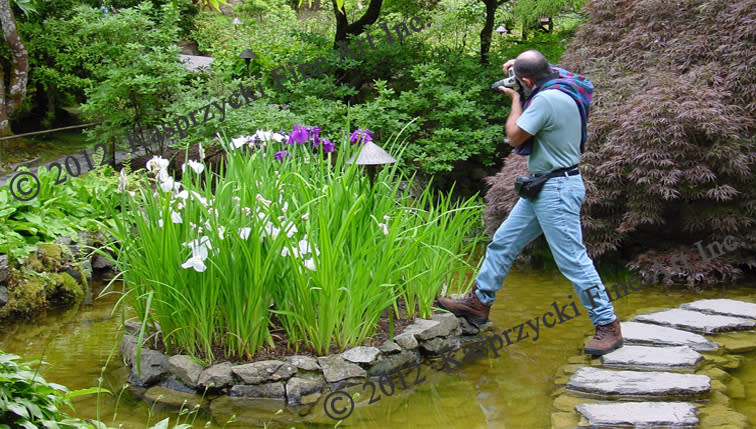 <div class='title'>           JK shooting water Iris wC         </div>