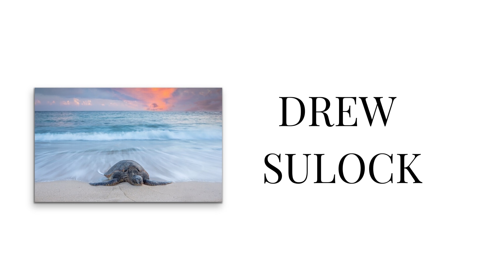 <div class='title'>           Evo Art Maui Artist Front Street Lahaina Gallery Classical Surreal Contemporary Abstract Bears Dolphins Whales Sculpture Metaphorical Vladimir Kush Lassen Provenza Parkes Bond Banovich Landscape Hawaii44         </div>
