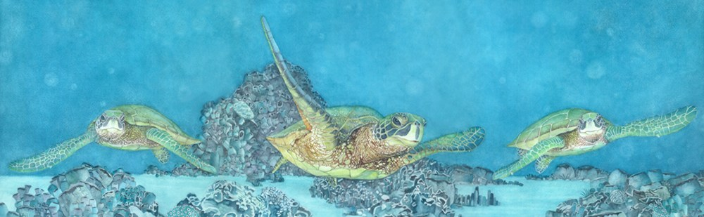 <div class='title'>           Under SeaTurtles slider         </div>                 <div class='description'>           Sea Turtles enjoying a swim in tropical waters          </div>