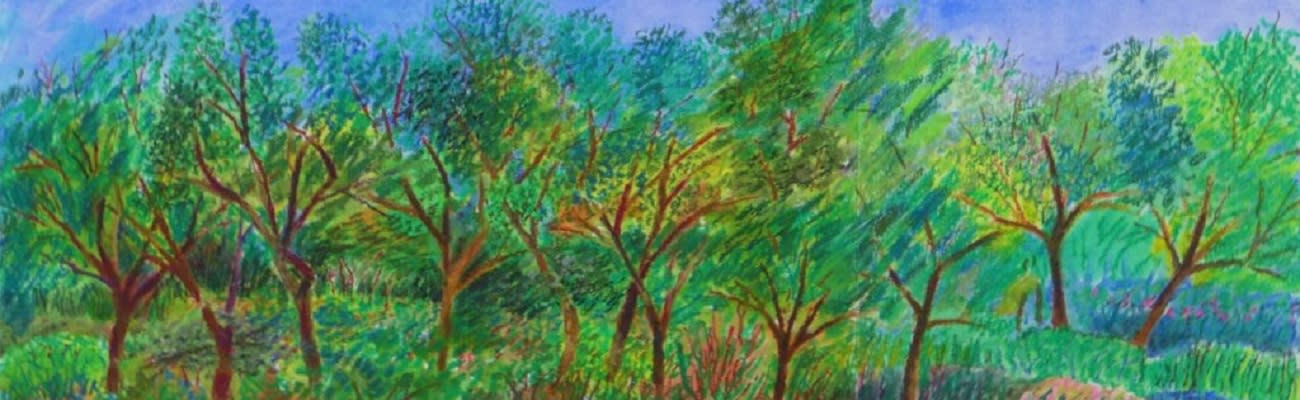 <div class='title'>           Skibell Landscapes BB vbs58n         </div>