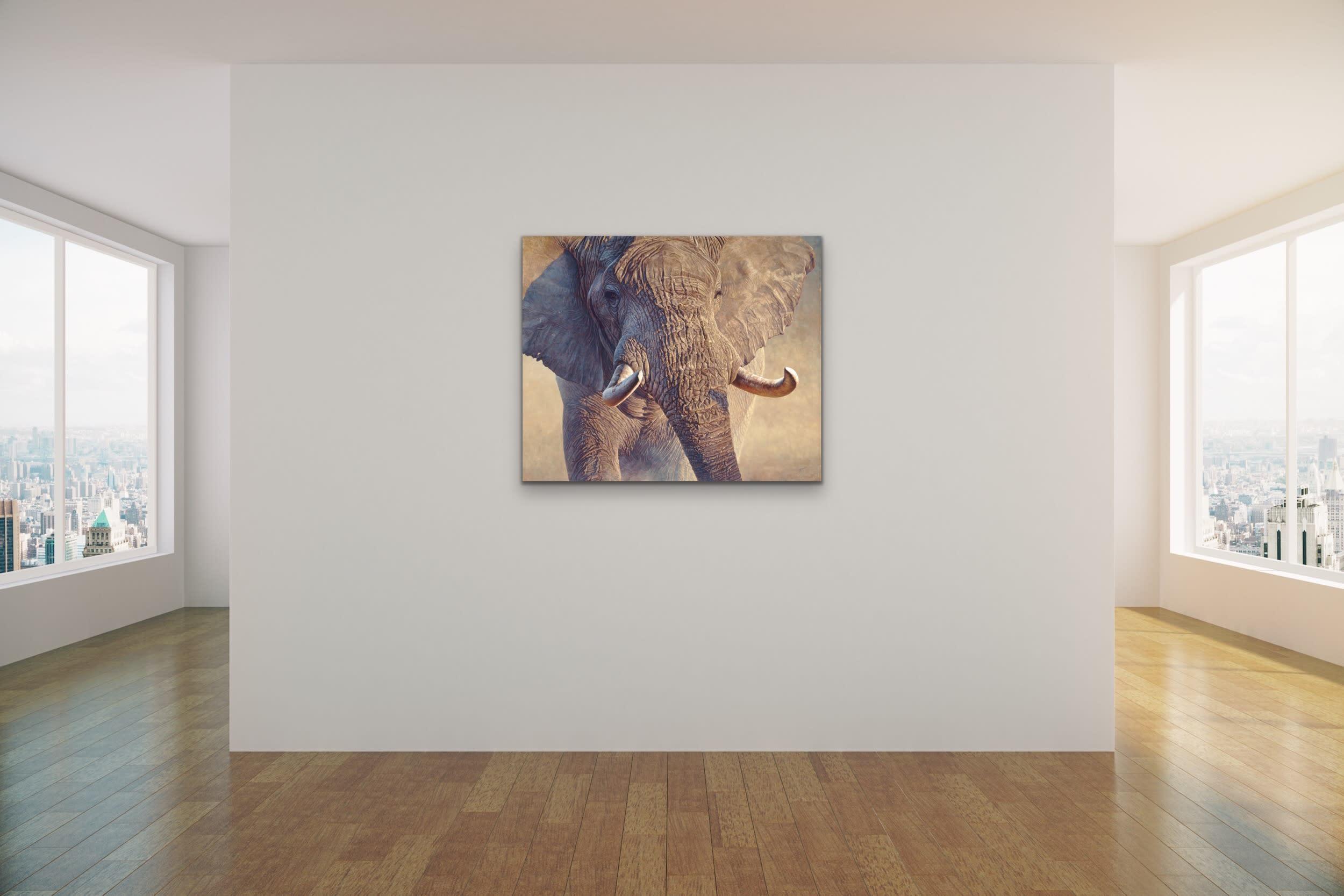 <div class='title'>           John Banovich Wildlife Africa Art Kammy Hodges Maui Art Galleries Lahaina 14         </div>
