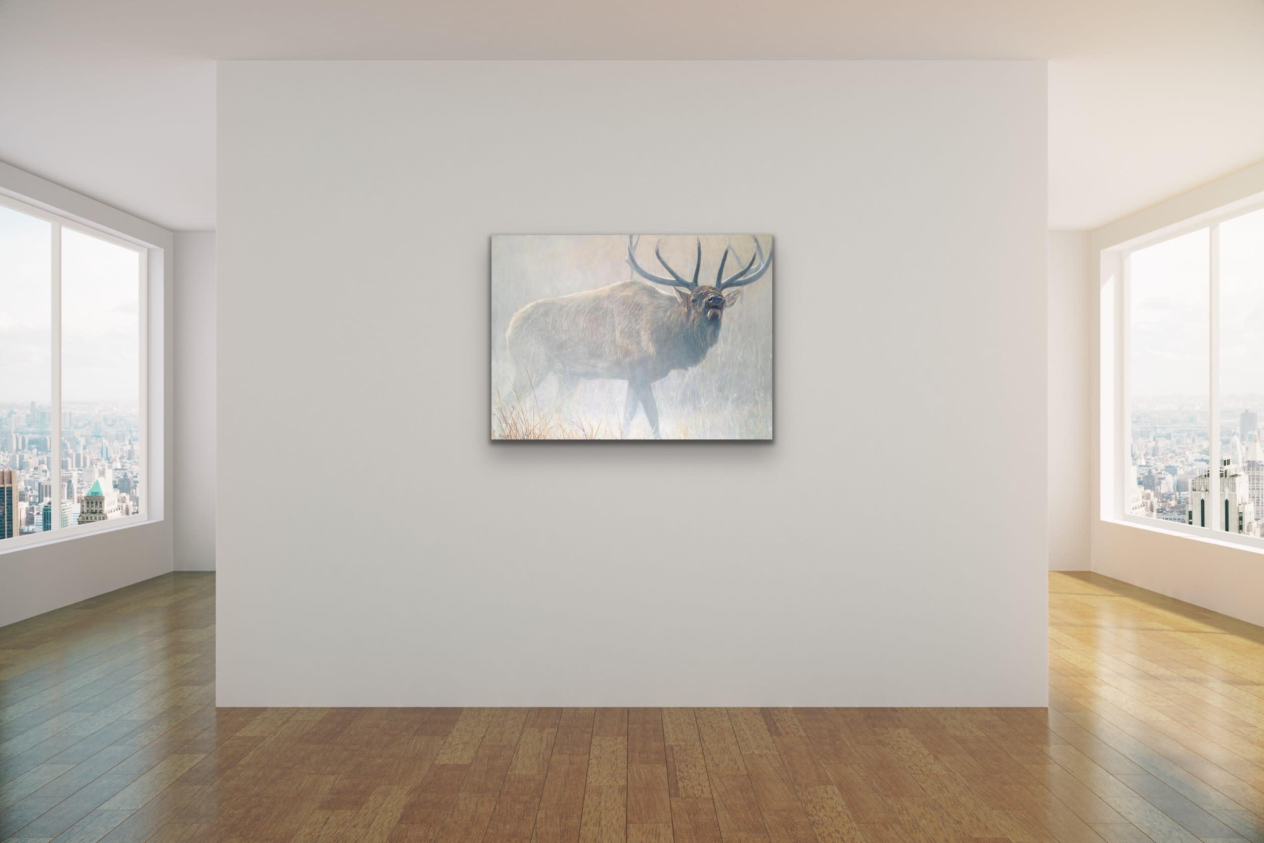 <div class='title'>           John Banovich Wildlife Africa Art Kammy Hodges Maui Art Galleries Lahaina 28         </div>