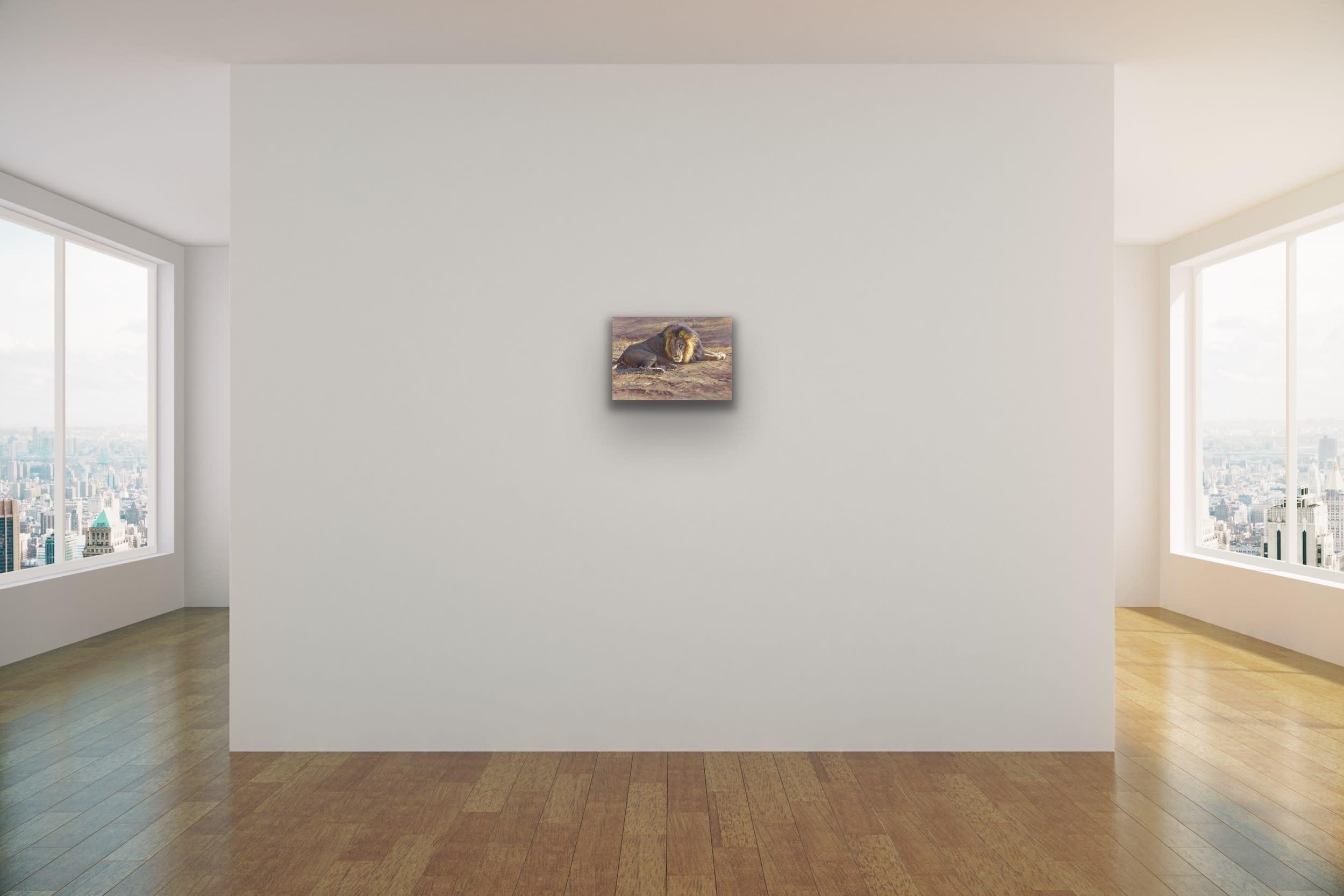 <div class='title'>           John Banovich Wildlife Africa Art Kammy Hodges Maui Art Galleries Lahaina 113         </div>