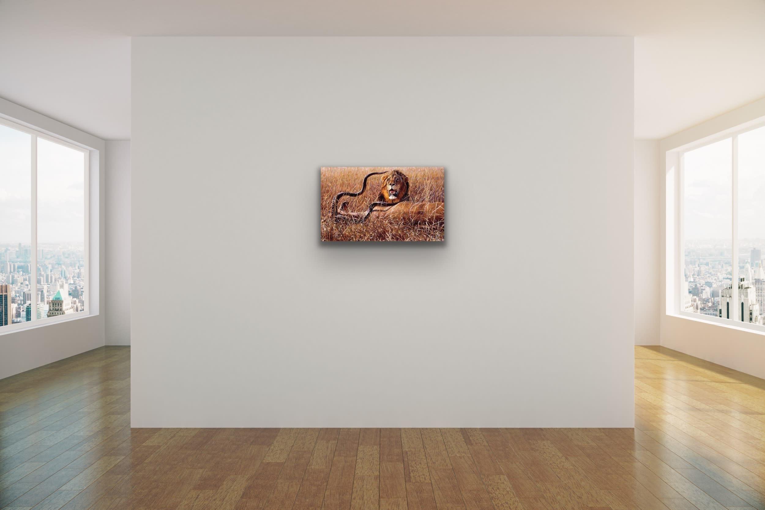 <div class='title'>           John Banovich Wildlife Africa Art Kammy Hodges Maui Art Galleries Lahaina 114         </div>