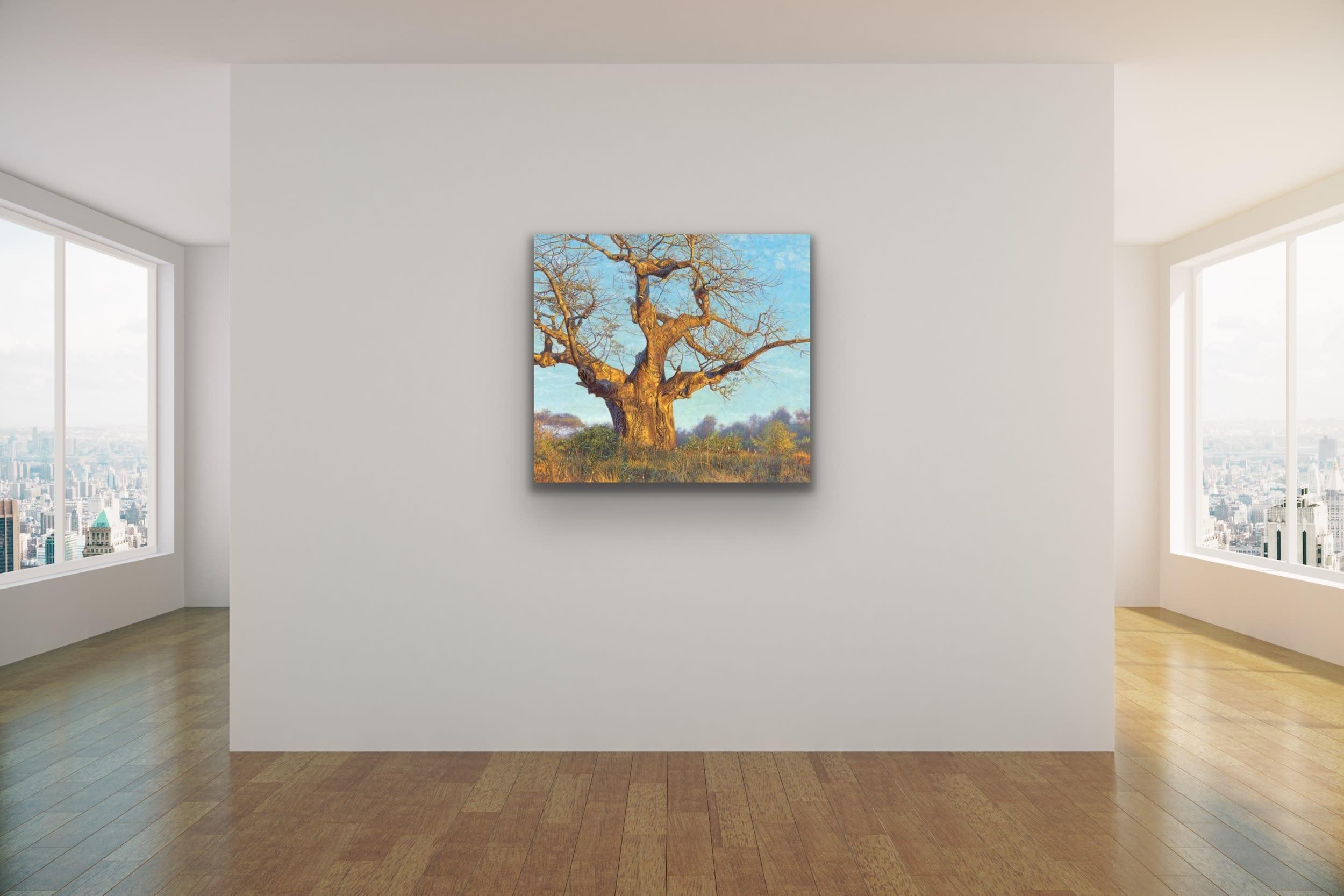 <div class='title'>           John Banovich Wildlife Africa Art Kammy Hodges Maui Art Galleries Lahaina 117         </div>