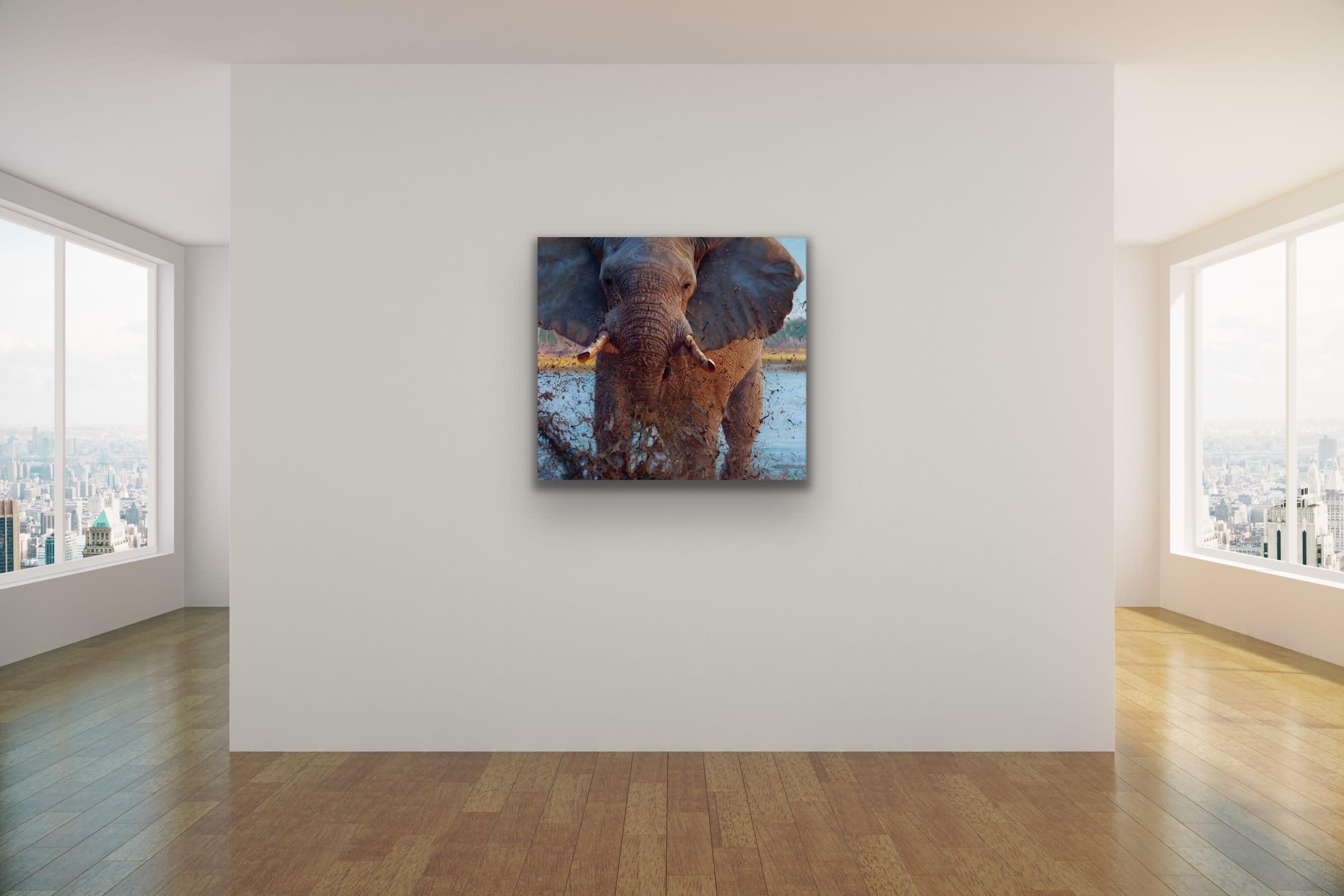 <div class='title'>           John Banovich Wildlife Africa Art Kammy Hodges Maui Art Galleries Lahaina 115         </div>