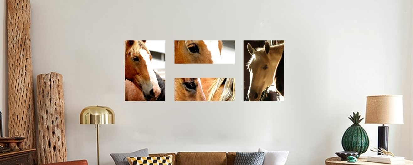 <div class='title'>           Horses         </div>