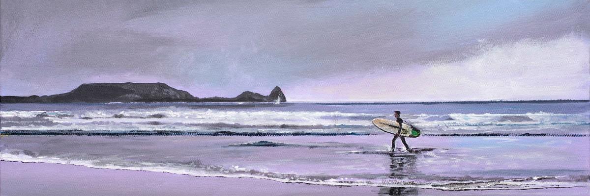 <div class='title'>           the surfer         </div>