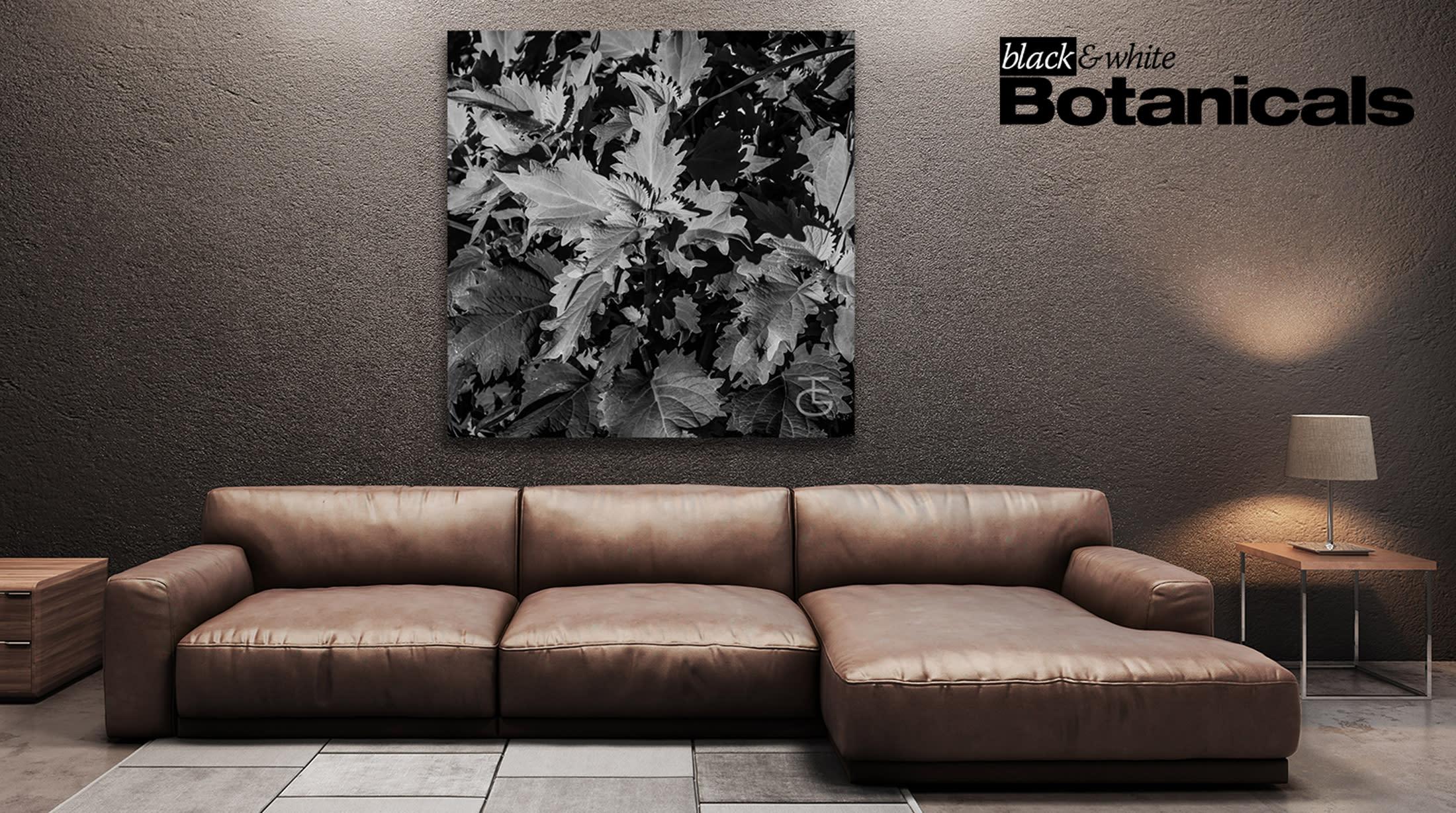 <div class='title'>           Botanicals Living Room 1a         </div>