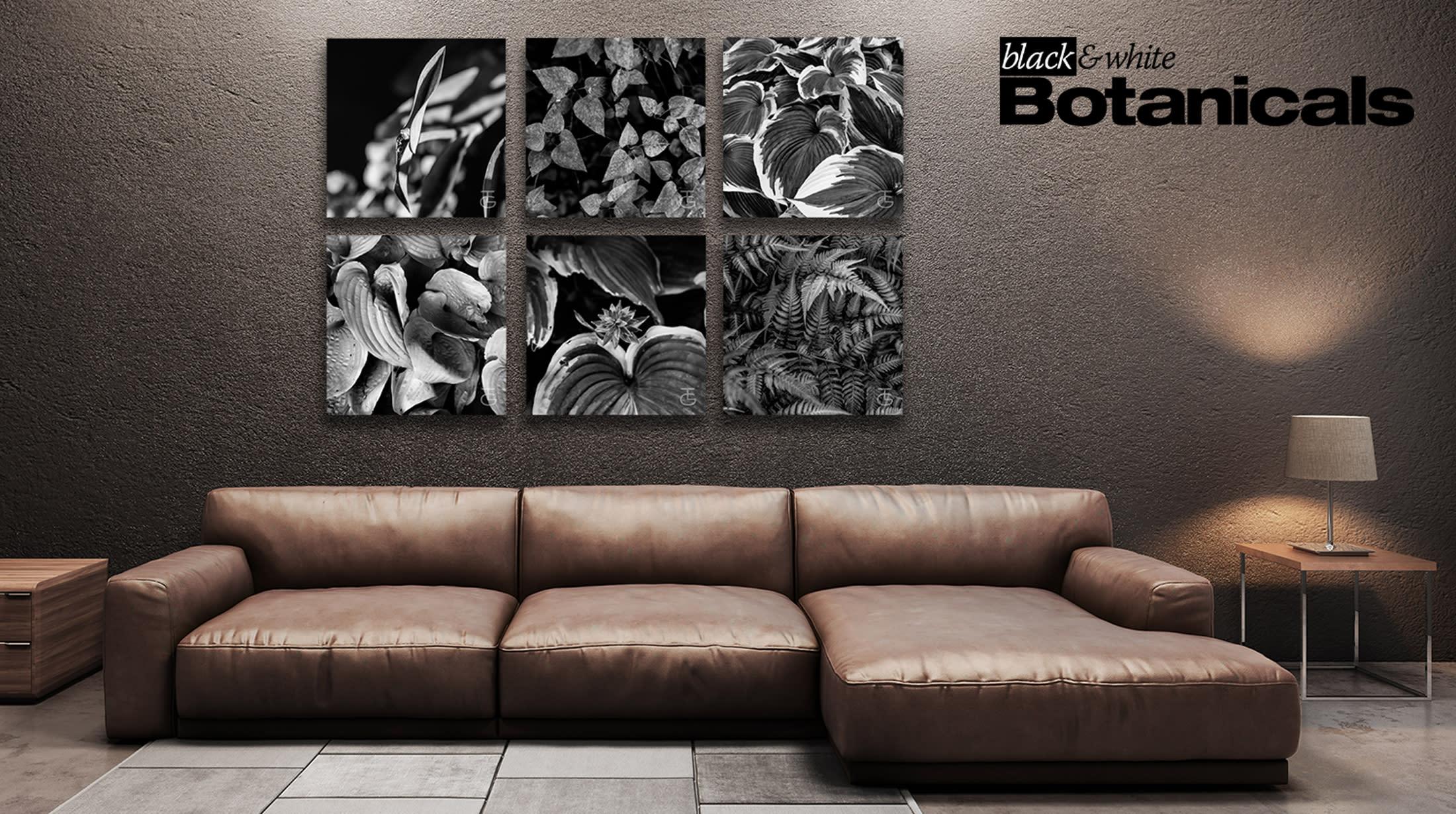<div class='title'>           Botanicals Living Room 1b         </div>