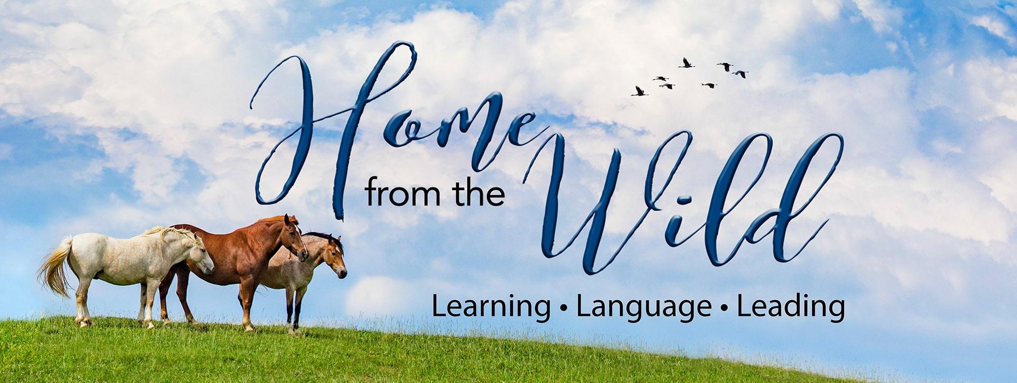 <div class='title'>           HomeFromTheWild Logo Banner         </div>