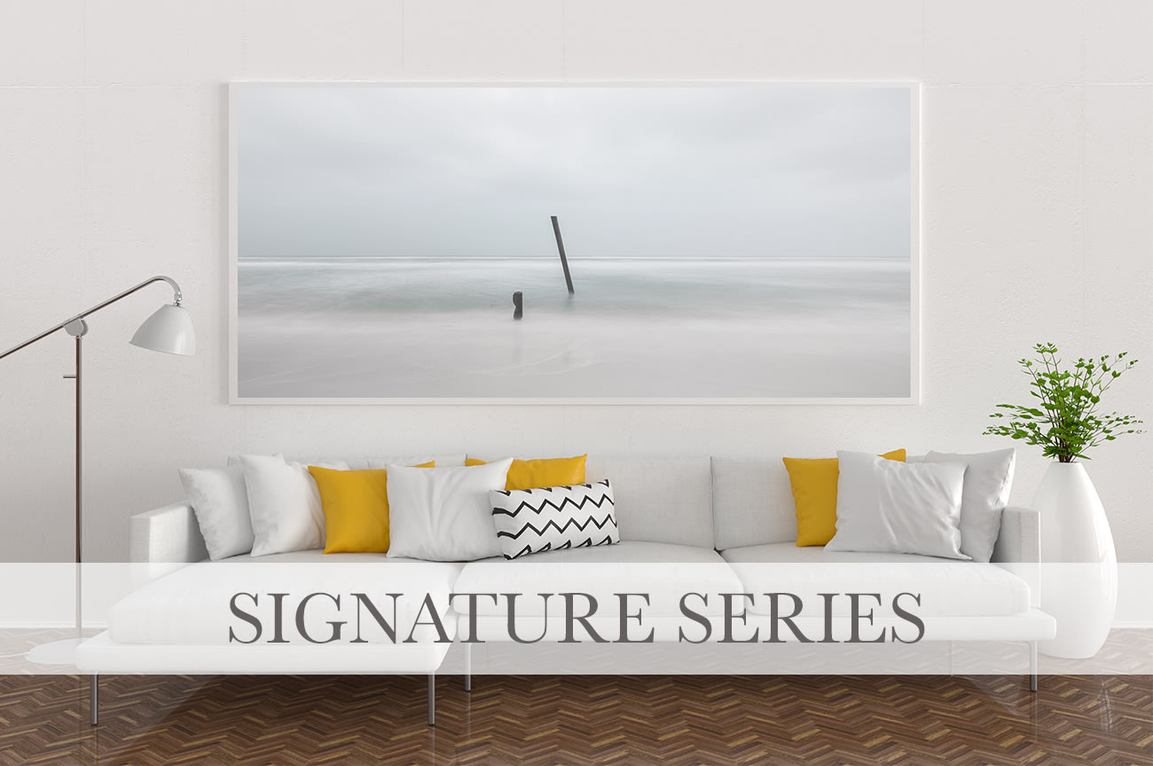 <div class='title'>           signature series with text for web         </div>