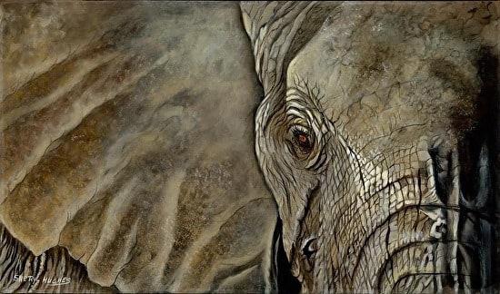 <div class='title'>           Elephant Eye by Sheryl Hughes         </div>                 <div class='description'>                    </div>