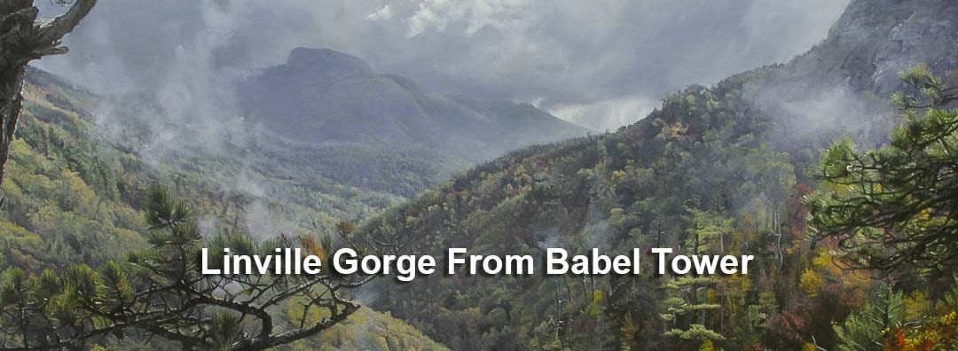 <div class='title'>           Linville Gorge From Babel Tower         </div>