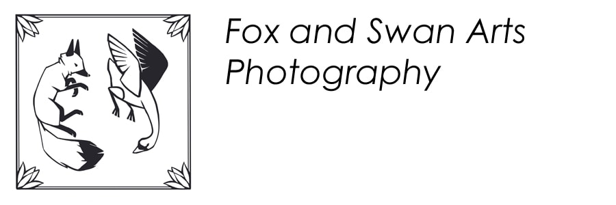 Fox and Swan Arts Photography