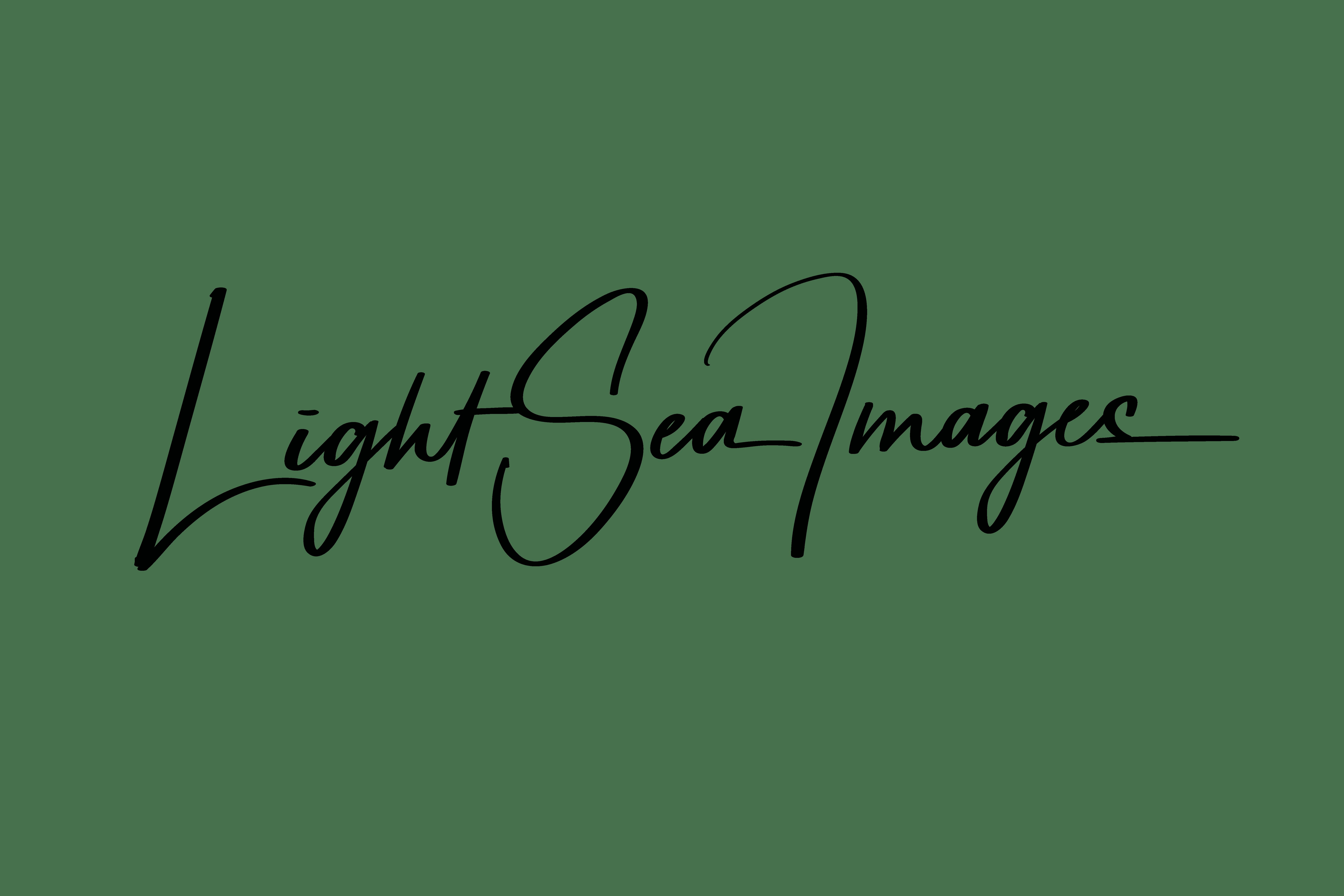 lightseaimages
