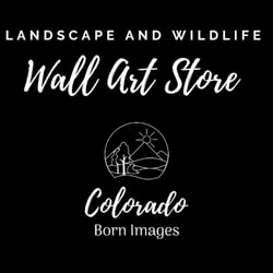 Colorado Born Images