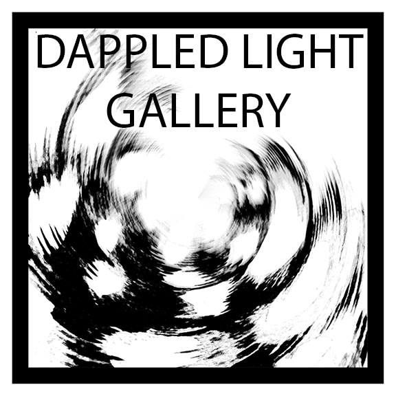 Dappled Light Gallery